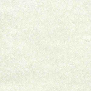 کاغذ خوشنویسی آمریکایی ابعاد ۵۰*۷۰سانتی متر -طرح سنتی-(کد۱-پسته ای)